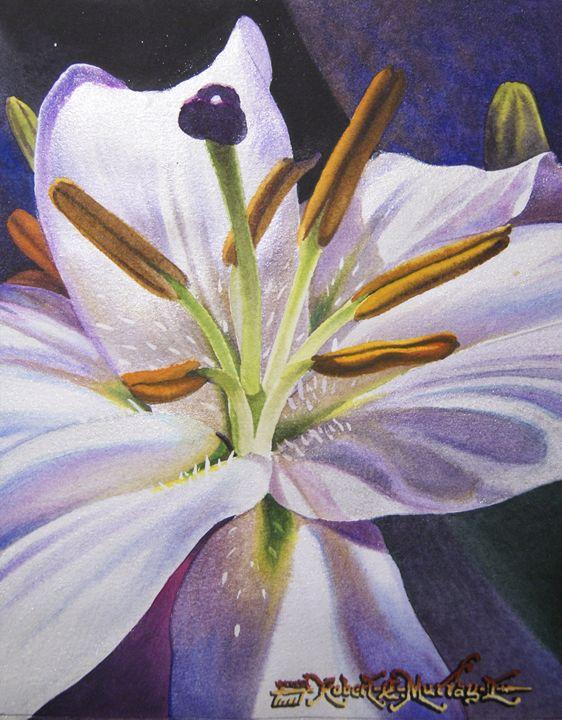Lily (Perlascente) - Robert C. Murray II