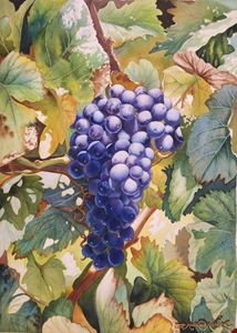 Dentro del Viñedo-50 x 70 cm - Robert C. Murray II