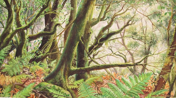 Bosque Mysterioso - Robert C. Murray II