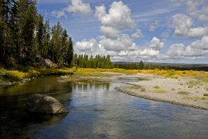 Yellowstone National Park - Mark Smith Nature Photography