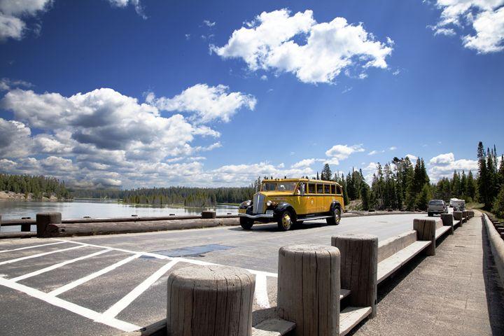 Yellowstone - Mark Smith Nature Photography