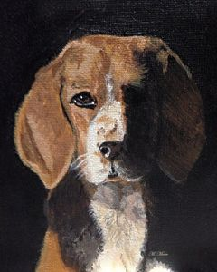 Mysterious Beagle