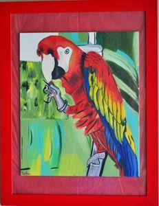 Red Macaw Bird