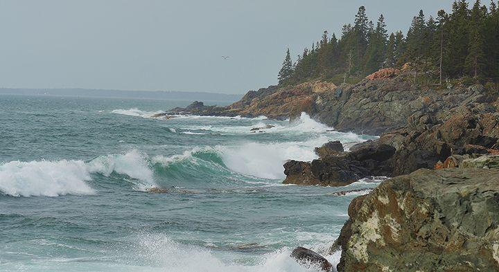 Stormy Seas - NatureBabe Photos
