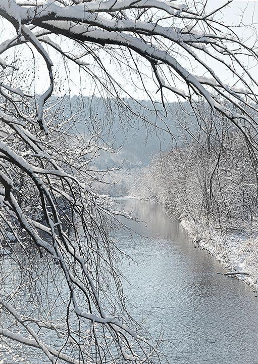 Riverside Cascading Snowy Tree - NatureBabe Photos