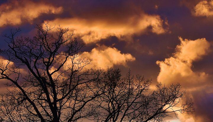 January skies - NatureBabe Photos