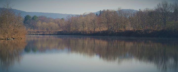 Spingtime Serenity - NatureBabe Photos