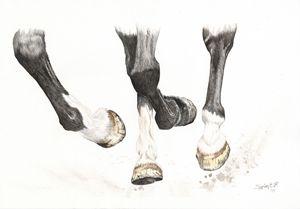 Running Hooves