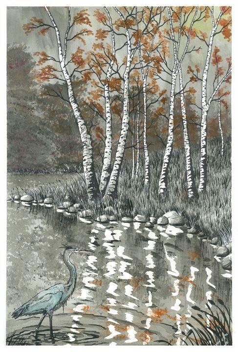 Nature Reflections - Jonathan Baldock