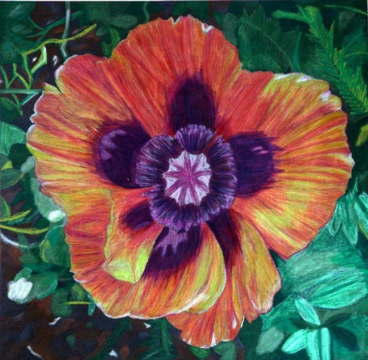 Colorful nature - Audrey Hardison