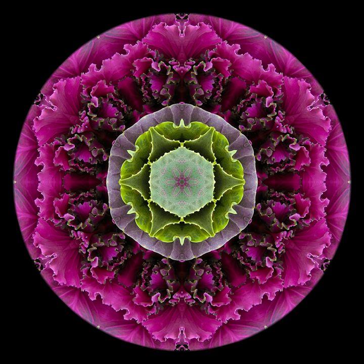 Kale Mandala - Digital Crafts