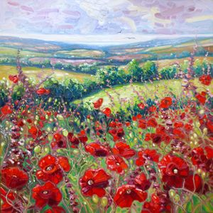 Summer Poppies in a Sussex Meadow 20