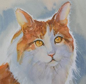 Red and white cat. - Irina Ushakova
