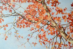 AUTUMN TREE - Irina Ushakova