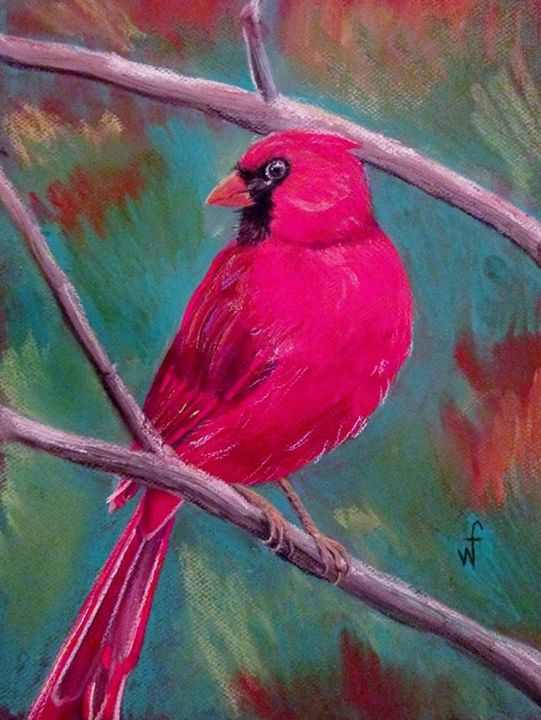 Cardinal - Will Ford Art