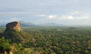 Sigiriya and the Jungle 2