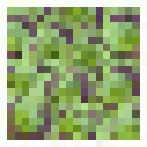 Leaves - Bruco Designs