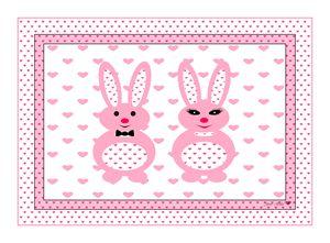 Mr & Mrs. Pink Bunny