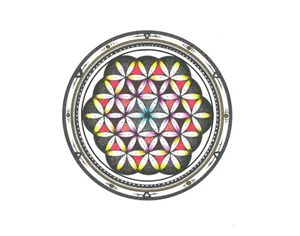 Flower Of Life - Universe