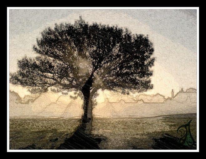 tree - Djire Gallery