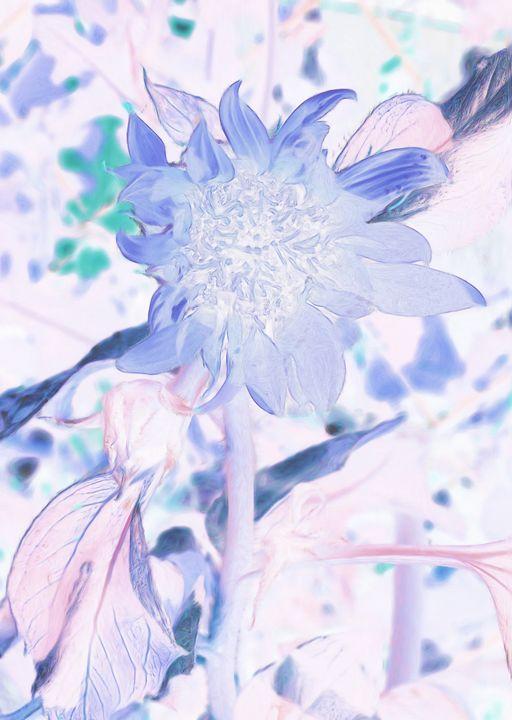 Blue Tone Sunflower - Double Moon Art