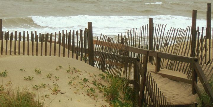 Sand Dunes - Ryan Lane Collection