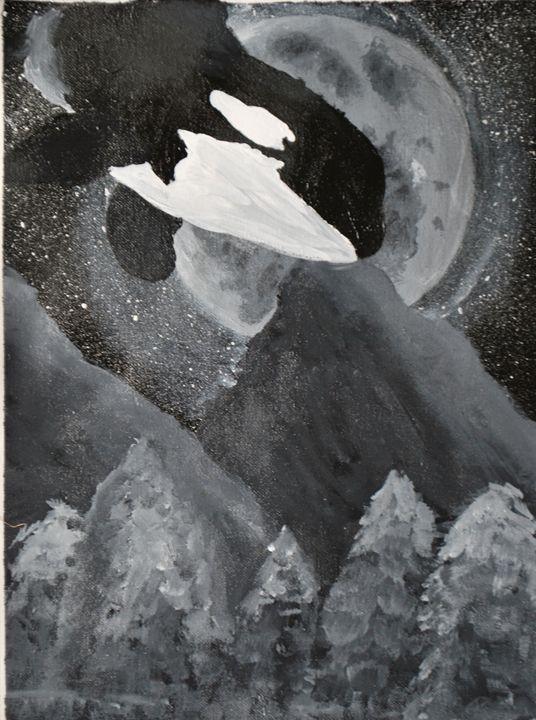 Orca of the Sky - Alyssa Evans