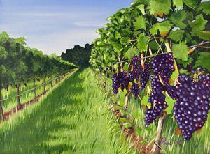 Vineyard No 1