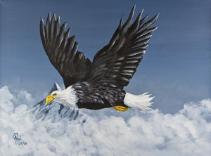All Seeing Eagle - Angelo Pietrarca
