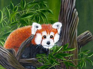 Sly The Fox