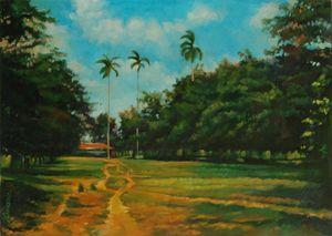 Cuban landscape, path with palms