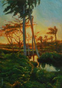 Cuban Landscape, river with palms