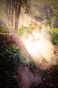 Smoke in the Sun