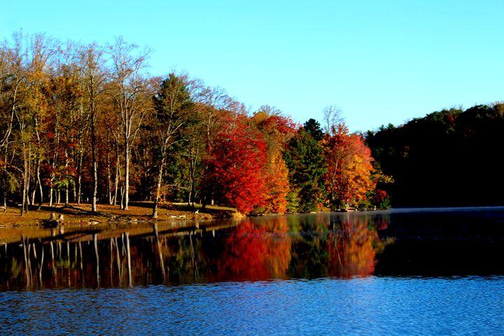 Fall reflections - J.T. Arts