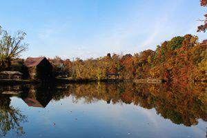 Reflections on Peak Creek  Pulaski V