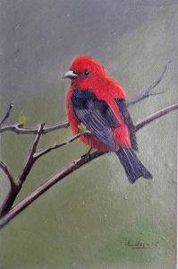Bird alone - Arzana Art