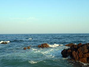 sea says im alon