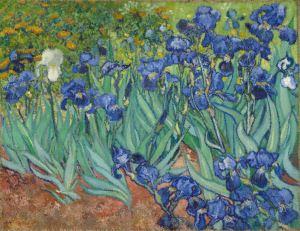 Irises Claude Monet