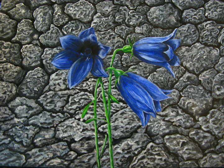Bluebell - M.R.Art