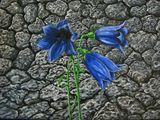 Original Painting Bluebell