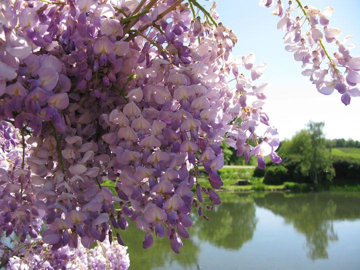 Landscape through blossoms - M.R.Art