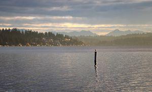 Morning Mist on Lake Washington