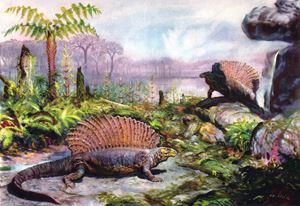 Edaphosaurus - SPCHQ
