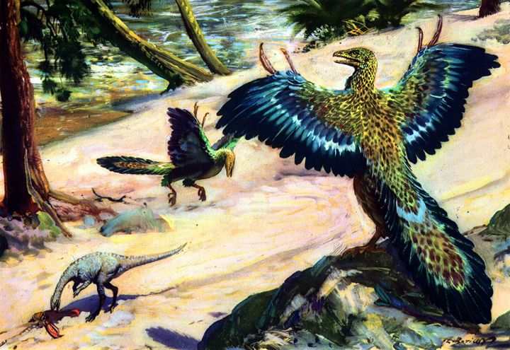 Compsognathus & Archaeopteryx - SPCHQ