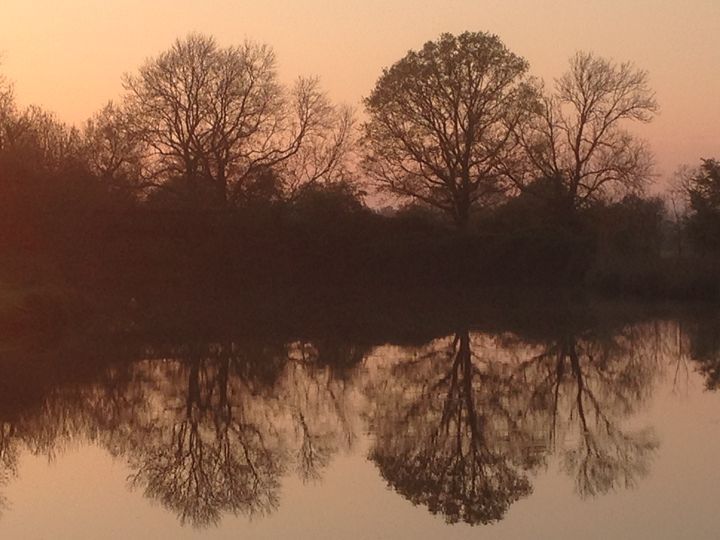 reflective symmetry - Andrew Bowes