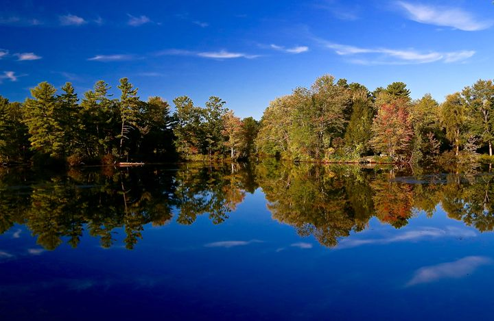 Reflection at the Pond - Cantor Photography