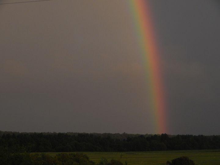 Rainbow - StrawBerry