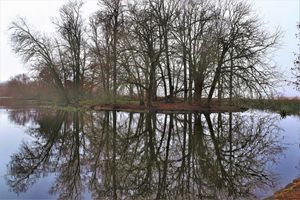 Lake Wendouree Mirror Image - Autumn