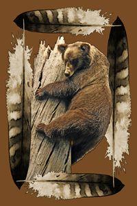 Bear Spirit - by Nelson Pawlak - Nelson Pawlak