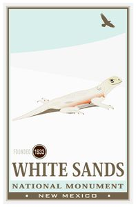 White Sands National Monument III
